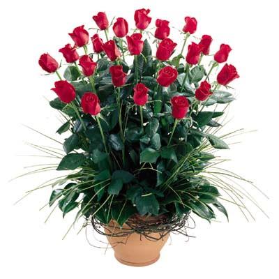 Mersin çiçek , çiçekçi , çiçekçilik  10 adet kirmizi gül cam yada mika vazo