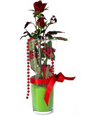 Mersin çiçek gönderme  Cam yada mika içerisinde 9 adet kirmizi gül - sevdiklerinize özel