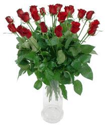 Mersin çiçek online çiçek siparişi  11 adet kimizi gülün ihtisami cam yada mika vazo modeli