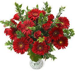 5 adet kirmizi gül 5 adet gerbera aranjmani  Mersin güvenli kaliteli hızlı çiçek