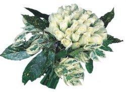Mersin çiçek gönderme sitemiz güvenlidir  9 Beyaz gül Özel kisiler için