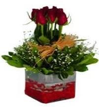 Mersin hediye sevgilime hediye çiçek  7 adet mika yada cam vazoda gül tanzimi