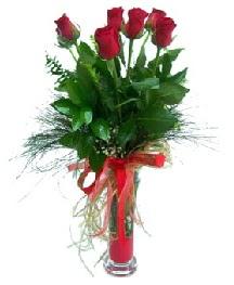 vazo içerisinde 5 kırmızı gül  Mersin çiçek siparişi vermek