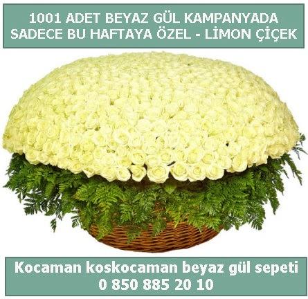 1001 adet beyaz gül sepeti özel kampanyada  Mersin 14 şubat sevgililer günü çiçek