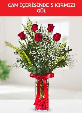 Cam içerisinde 5 adet kırmızı gül  Mersin online çiçekçi , çiçek siparişi