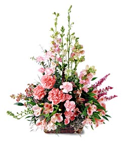 Mersin kaliteli taze ve ucuz çiçekler  mevsim çiçeklerinden özel