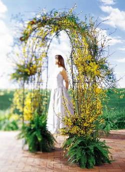 Mersin çiçek yolla , çiçek gönder , çiçekçi   güller ve mevsim çiçegi