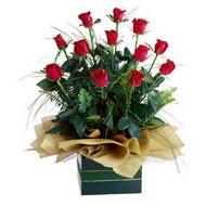 Mersin çiçek yolla , çiçek gönder , çiçekçi   10 adet kirmizi gül özel mika yada cam vazoda