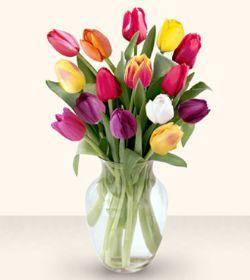 Mersin İnternetten çiçek siparişi  13 adet cam yada mika vazoda laleler