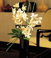 Mersin İnternetten çiçek siparişi  cam yada mika vazo içerisinde dal orkide