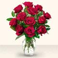 Mersin anneler günü çiçek yolla  10 adet gül cam yada mika vazo da