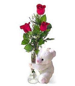 oyuncak ve 3 adet gül  Mersin online çiçekçi , çiçek siparişi