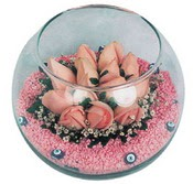 Cam fanus içerisinde 9 gül  Mersin güvenli kaliteli hızlı çiçek