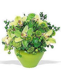 cam yada mika vazoda 5 adet orkide   Mersin cicek , cicekci