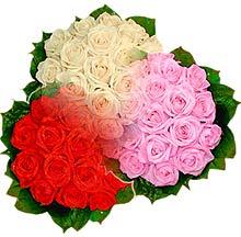 3 renkte gül seven sever   Mersin çiçek mağazası , çiçekçi adresleri
