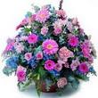 karisik mevsim kir çiçekleri  Mersin 14 şubat sevgililer günü çiçek