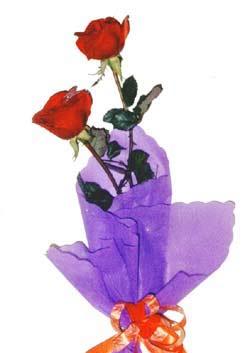 2  adet kirmizi gül buketi   Mersin çiçek mağazası , çiçekçi adresleri