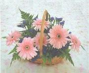 gerbera çiçeklerinde sepet   Mersin anneler günü çiçek yolla