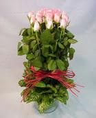 13 adet pembe gül silindirde   Mersin anneler günü çiçek yolla