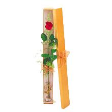 ince  kutuda  1  gül   Mersin anneler günü çiçek yolla