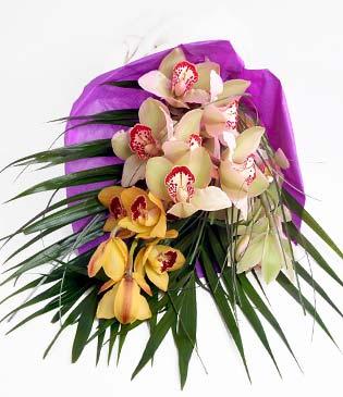 Mersin çiçek satışı  1 adet dal orkide buket halinde sunulmakta