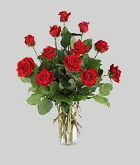 Mersin çiçek satışı  11 adet kirmizi gül vazo halinde