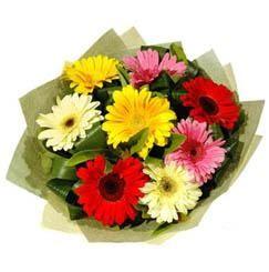 9 adet karisik gerbera demeti  Mersin çiçekçiler