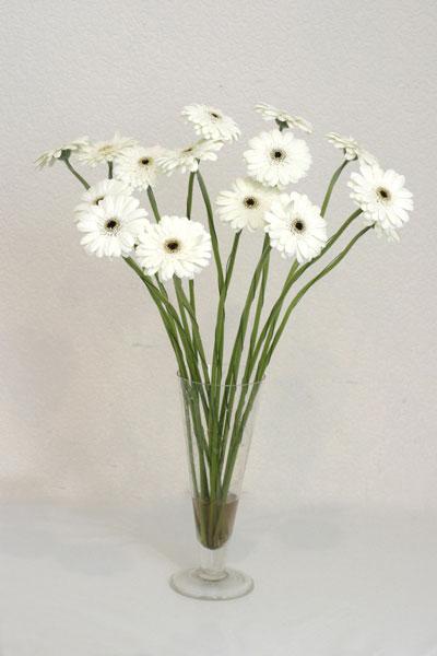 Mersin çiçekçiler  cam vazo içerisinde 17 adet sade gerbera