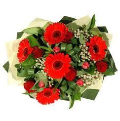 Mersin kaliteli taze ve ucuz çiçekler   5 adet kirmizi gül 5 adet gerbera demeti