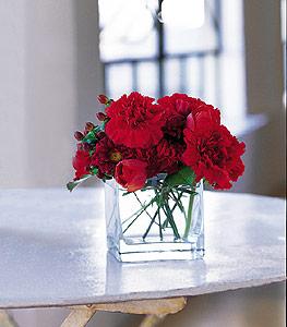 Mersin kaliteli taze ve ucuz çiçekler  kirmizinin sihri cam içinde görsel sade çiçekler