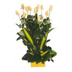 12 adet beyaz gül aranjmani  Mersin internetten çiçek siparişi