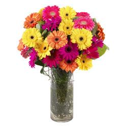 KARISIK GERBERALARDAN CAM VAZO TANZIMI  Mersin çiçek siparişi vermek
