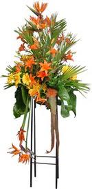 Mersin online çiçekçi , çiçek siparişi  perförje tanzimi dügün nikah ve açilislara