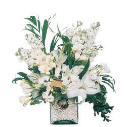 Mersin çiçek gönderme sitemiz güvenlidir  sadece beyazlardan olusmus mevsim cam yada mika tanzim