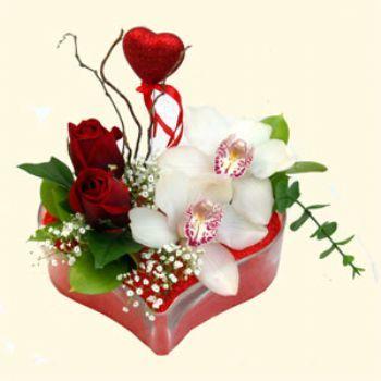 Mersin çiçekçi mağazası  1 kandil orkide 5 adet kirmizi gül mika kalp