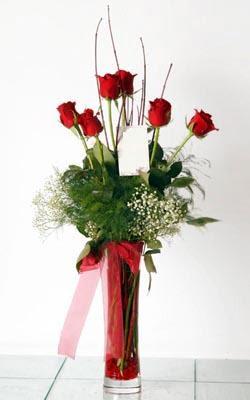 Mersin çiçek satışı  6 adet kirmizi gül ve cam yada mika vazo