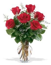 Mersin 14 şubat sevgililer günü çiçek  7 adet kirmizi gül cam yada mika vazoda sevenlere