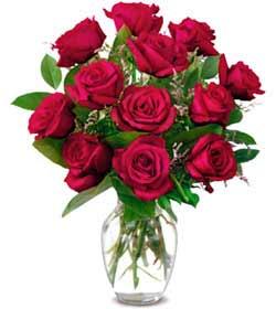Mersin çiçek gönderme  1 düzine kirmizi gül sevenlere özel vazo gülleri