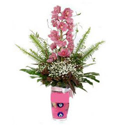 Mersin güvenli kaliteli hızlı çiçek  cam yada mika vazo içerisinde tek dal orkide çiçegi