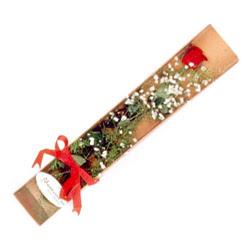 Mersin çiçek mağazası , çiçekçi adresleri  Kutuda tek 1 adet kirmizi gül çiçegi
