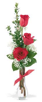 Mersin çiçek satışı  mika yada cam vazoda 3 adet kirmizi gül