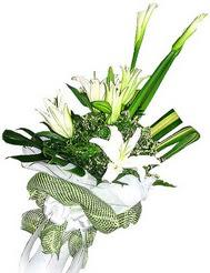 Mersin çiçek siparişi vermek  3 dal kazablanka çiçegi ve yesillikler