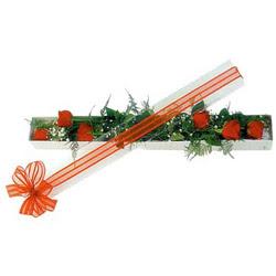 Mersin online çiçekçi , çiçek siparişi  6 adet kirmizi gül kutu içerisinde