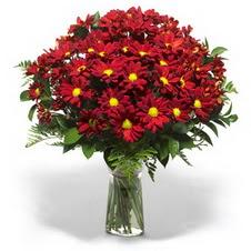 Mersin anneler günü çiçek yolla  Kir çiçekleri cam yada mika vazo içinde