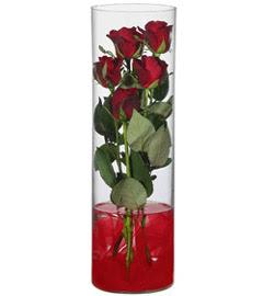 cam içerisinde 7 adet kirmizi gül  Mersin İnternetten çiçek siparişi
