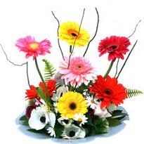Mersin güvenli kaliteli hızlı çiçek  camda gerbera ve mis kokulu kir çiçekleri