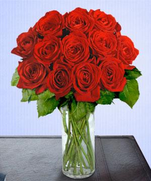 Anneme 12 adet cam içerisinde kirmizi gül  Mersin online çiçekçi , çiçek siparişi