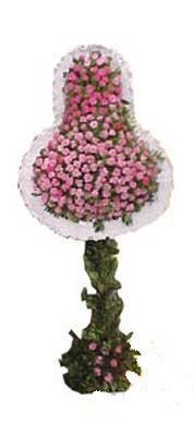 Mersin kaliteli taze ve ucuz çiçekler  dügün açilis çiçekleri  Mersin çiçek gönderme sitemiz güvenlidir
