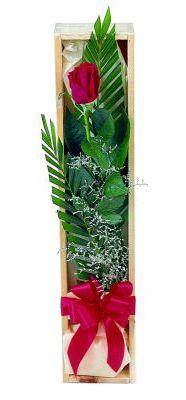1 adet kutuda kirmizi gül  Mersin 14 şubat sevgililer günü çiçek