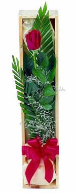 Sade ve gösterisli kutu içerisinde tek gül  Mersin yurtiçi ve yurtdışı çiçek siparişi
